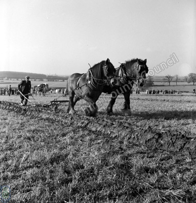 Mr K.A Wilson, Ploughing Champion